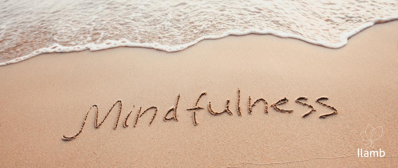 Mindfulness - Programa de 8 Semanas Presencial