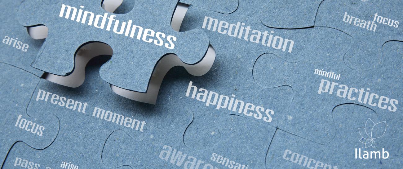 Mindfulness - Programa de 8 Semanas à Distância (aulas ao vivo)