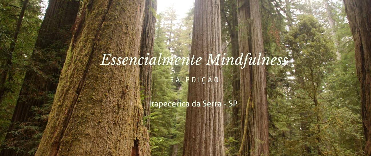 Retiro Essencialmente Mindfulness