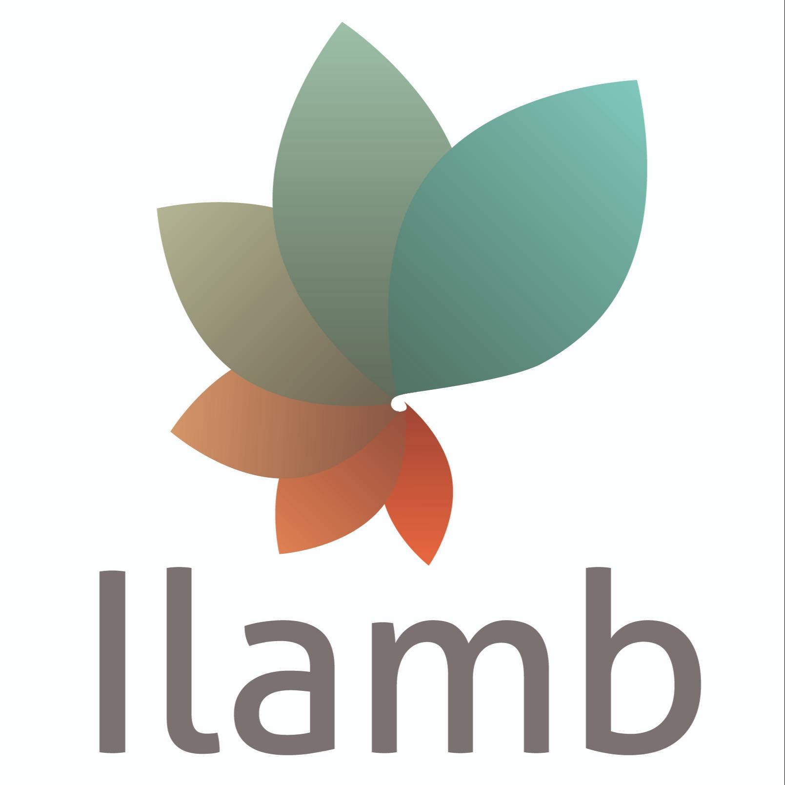 ILAMB