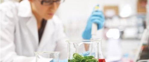 Metrologia Aplicada à Laboratórios de Alimentos