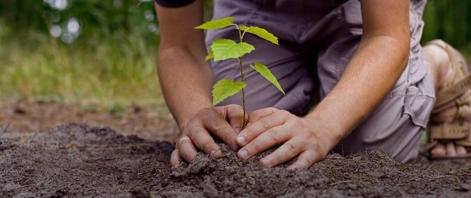 Saúde Ambiental e Educação Ambiental