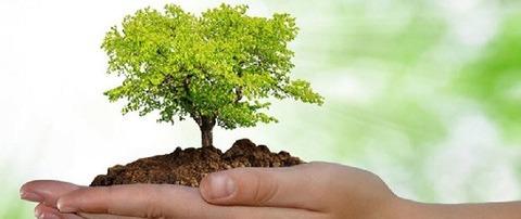 Sistema de Gestão Ambiental - Norma NBR ISO 14001:2015