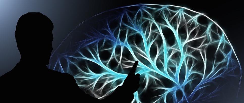 O Processo Decisório e as Predominâncias Cerebrais