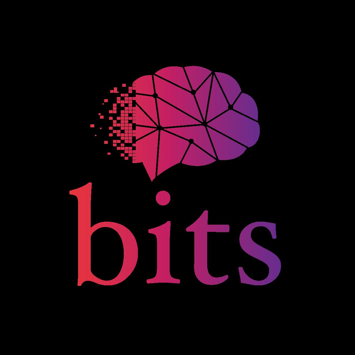 Logo BITS ACADEMY