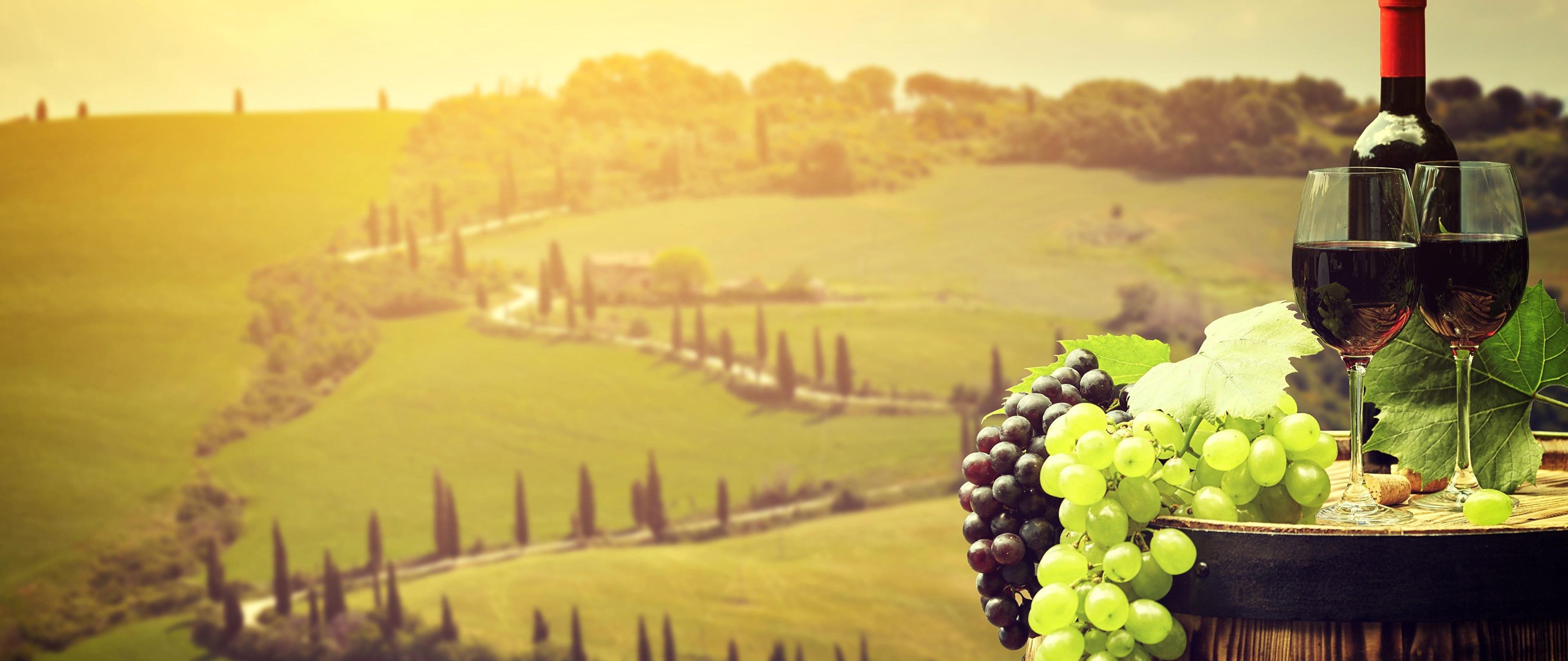 Curso - Vinhos da Itália DOC e DOCG